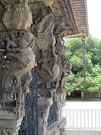 varadarajeperumal tempel kanchipur