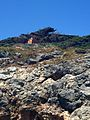 Via Residence, 1, 58012 Giannutri Isola Di GR, Italy - panoramio (1).jpg