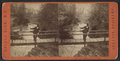 View from Sylvan Bridge,, from Robert N. Dennis collection of stereoscopic views.png