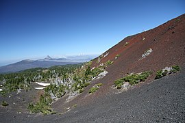 View from downer part of Collier Cone in Oregon (2).JPG