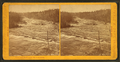 View in the dalles of the St. Louis river, by Caswell & Davy 6.png