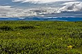 View south across tundra to Engigstciak and British Mountains, Ivvavik National Park, YT.jpg