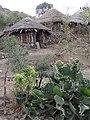 Village Scene near Lalibela - Ethiopia (8734134203).jpg