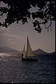 Virgin Islands National Park VIIS3246.jpg
