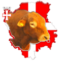 Volyn meat cattle logo.png