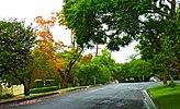 Waimea Road, Lindfield, New South Wales (2011-04-28) 02.jpg