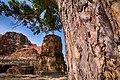 Wat Phra Mahatat 01.jpg
