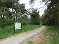 Weert-grafheuvelveld Boshoverheide (32).jpg