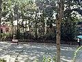 Weicheng, Weifang, Shandong, China - panoramio (105).jpg