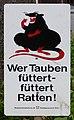 Wer Tauben füttert - füttert Ratten! (3).jpg