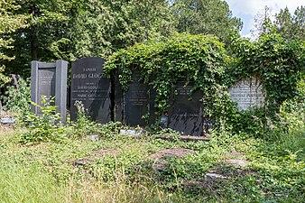 Wien, Zentralfriedhof, Alter Jüdischer Friedhof -- 2018 -- 3217.jpg