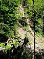 WikiProjekt Landstreicher Starzlachklamm 44.jpg