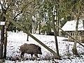 Wildgehege bei Eningen unter Achalm - panoramio.jpg