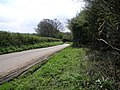 Winding Lane Cycleway - geograph.org.uk - 159875.jpg