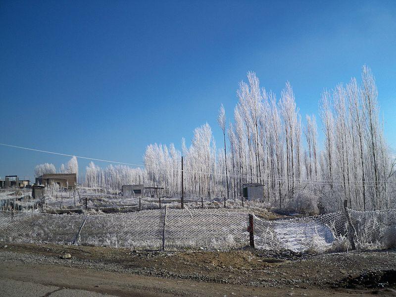 File:Winter in Isfana.JPG