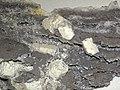 Witherite-calcite (Minerva Mine - 1, near Cave-in-Rock, Illinois, USA) 3 (34577873522).jpg