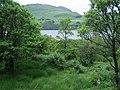 Woodland area, near Finglen - geograph.org.uk - 502340.jpg
