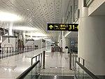 Wuhan Tianhe Airport T3 6.jpg