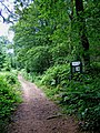 Wyre Forest footpath with new Natural England Information Board - geograph.org.uk - 1372111.jpg