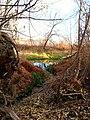 Yakima Greenway - panoramio (22).jpg