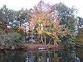 Yellow creek fall season - panoramio.jpg
