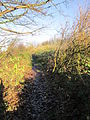 Yew Tree Road public footpath, Huyton (1).JPG