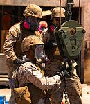 Yuma Marines Commence Cleanup at AV-8B Harrier Crash Scene in Imperial, Calif. 140607-M-BK311-004.jpg