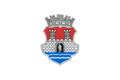 Zastava Pančeva.png