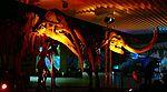 Zedler-Verleihung 2009 - Mammutschädel illuminiert (2540).jpg
