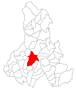Location of Zetea