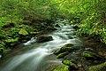 Zindel Park Trails (1) (34588809250).jpg