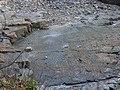 """Fossil"" ripple marks - geograph.org.uk - 2033864.jpg"