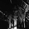 """""""Hlapci"""" in trnjeve veje na podstrehi (zaradi mačk in miši), Oštrc 1956.jpg"""