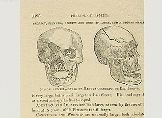 "Mangas Coloradas - Drawing of Skull of Mangas Coloradas from 1873 book ""Human Science"" p. 1196 by Orson Squire Fowler"