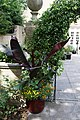 'Cannaceae' Canna (genus) at Quex House Birchington Kent England 2.jpg
