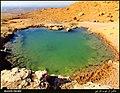 (((آبمعدنی قره پالچیق( سیاه گل) مراغه))) - panoramio.jpg