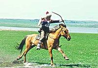 Башкирская лошадь Википедия Башкирский всадник jpg