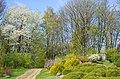 Ботанічний сад ХНУ у місті Хмельницькому.jpg