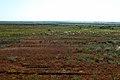 Вид в восточном направлении - panoramio (22).jpg