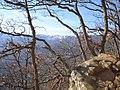 Вид из горного леса южного склона горы Аюдаг на Бабуган-Яйлу.jpg