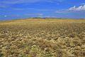 Гора Утиная - panoramio.jpg