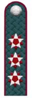 Государственный советник РФ 1 класса ФНС РФ.png