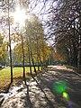 Графський парк (парк Ніжинського педінституту) 01.jpg