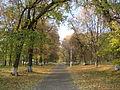 Згурівка-парк.JPG