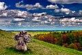 Камьяний хрест у селі Підкамінь.jpg