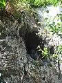 Миоценски спруд Ташмајдан, природни споменик, 003.JPG