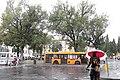 "Мокрая Флоренция и ""мокрый Флорентиец"" - panoramio.jpg"