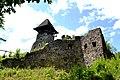 Невицький замок, Невицьке, Ужгородський район, Закарпатська область.jpg