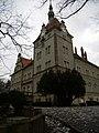Палац графів Шенборнів у Чинадійово (ракурс 4).JPG