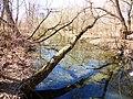 Правобережная старица реки Яузы с фрагментом низкой поймы 04.jpg